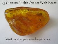 9g Genuine Baltic Amber With Insect