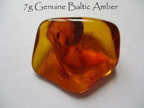 7g Genuine Baltic Amber