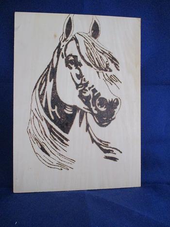Horses Head Pyrography